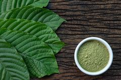 Mitragynina speciosa or Kratom leaves with powder product in white ceramic bowl and wooden table background. Top view Stock Photo