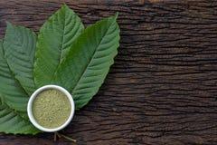 Mitragynina speciosa oder Kratom verlässt mit Pulverprodukt im weißen keramischen Schüssel- und Holztischhintergrund lizenzfreie stockfotografie