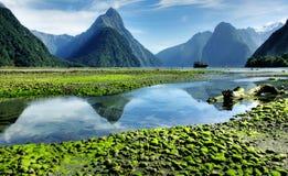 Mitre o pico, Milford Sound Fotografia de Stock