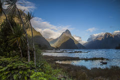 Mitre Peak at dawn in early morning light. Mitre Peak in Milford Sound  Fjordland National Park New Zealand Royalty Free Stock Photos