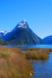 Mitre Peak Foreshore Royalty Free Stock Image