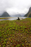 Mitre Peak, Milford Sound. Milford sound in New Zealand Royalty Free Stock Image