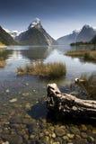 Mitre Peak, Milford Sound, Fiordland National Park, South Island, New Zealand Royalty Free Stock Photography