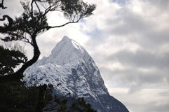 Mitre Peak Stock Photography