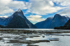 The Mitre Peak in the Milford Sound, New Zealand Stock Photography