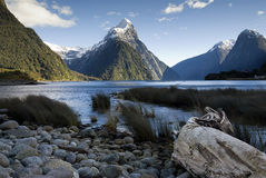 Mitre Peak, Milford Sound, South Island, New Zealand. Royalty Free Stock Images
