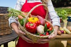 Mitt- avsnitt av kvinnan som rymmer en korg av nya grönsaker på stallen Fotografering för Bildbyråer