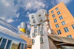 Mitt för MIT Stata i Boston Royaltyfria Bilder