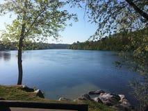 Mitt- morgon på floden Ticino Arkivbild