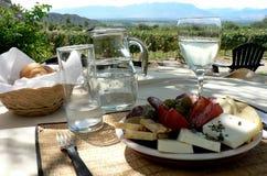 Mittagessen draußen in einem Weinberg Stockfotografie