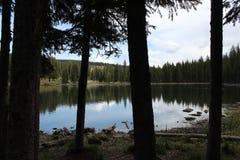 Mitte Colorados großartigen Mesa Visitors stockfoto