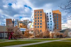 Mitte Massachusetts Institute of Technology MITs Stata - Cambridge, USA Lizenzfreies Stockfoto