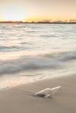 Mitteilung in der Flasche auf Strand mit Sonnenuntergang- und Unschärfeindustrie backgro Lizenzfreie Stockfotografie