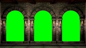 Mittelalterliche Bögen mit grünem Schirm stock video footage