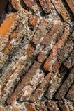 Mittelalterliche Kaminfliesen Stockbilder