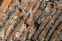 Mittelalterliche Kaminfliesen Stockfotografie
