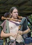 Mittelalterlicher Musiker Stockbild