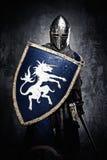 Mittelalterlicher Ritter in der vollen Rüstung Stockbilder