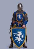 Mittelalterlicher Ritter mit Schild vor ihm lizenzfreie stockbilder