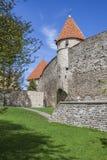 Mittelalterlicher Turm im Frühjahr Stockbilder