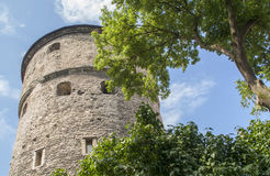 Mittelalterlicher Turm in Tallin Stockfotos