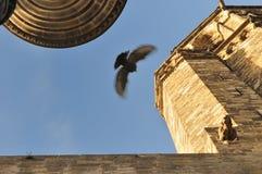 Mittelalterliches Barcelona Lizenzfreie Stockbilder
