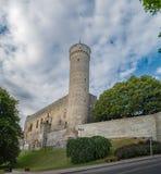 Mittelalterliches fortness in Tallinn, Estland stockbilder
