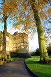 Mittelalterliches Schloss Lizenzfreies Stockfoto