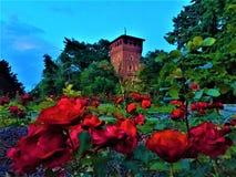 Mittelalterliches Schloss von Valentine Park in Turin-Stadt, Italien Kunst, Geschichte, Märchen und rote Rosen stockfotos