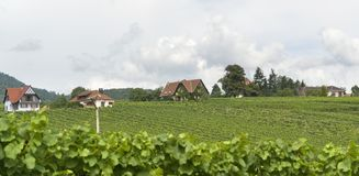 Mittelbergheim Stock Image