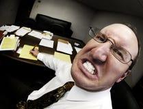 Mittelchef im Büro Lizenzfreies Stockfoto