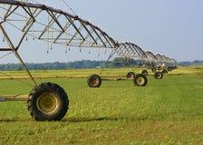 MittelgelenkBewässerungssystem Stockbilder