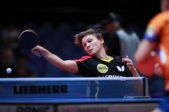 MITTELHAM Nina da rotação da parte superior de Alemanha fotografia de stock royalty free