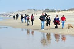 Mittelmeer-Küstenlinie Israels Lizenzfreies Stockbild