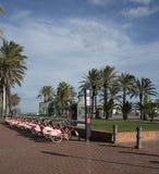 Mittelmeer-November Sun Stockfotografie