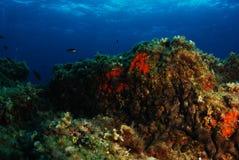 Mittelmeerblau Lizenzfreies Stockbild