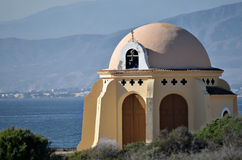 Mittelmeereinsiedler Lizenzfreies Stockbild