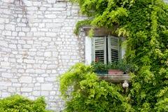 Mittelmeerfenster mit grünen Blättern Lizenzfreie Stockbilder