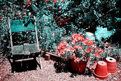 Mittelmeergarten Lizenzfreie Stockfotos