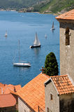 Mittelmeerlebensdauer am Sommer Stockfoto
