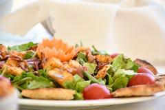 Mittelmeerteller mit greeens, Tomaten und Fleisch Lizenzfreie Stockbilder