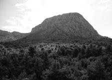 Mittelmeerwald und ein felsiger Berg Stockbild