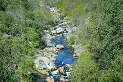 Mittelmeerwaldkreuz durch einen Fluss, Salamanca Spanien stockfotografie