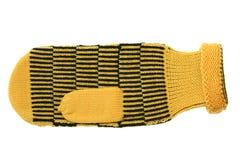 Mitten amarelo Fotografia de Stock
