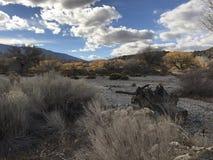 Mitten in Wüste Stockfotografie