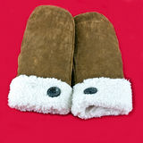 Warm mittens Royalty Free Stock Images