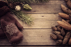 Mittens, cones and pine branch Royalty Free Stock Image
