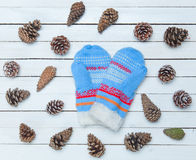 Mittens and cones Royalty Free Stock Photos