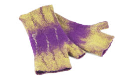 Mittens from felted wool Stock Image