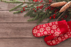 Mittens with fir and berry Royalty Free Stock Photography